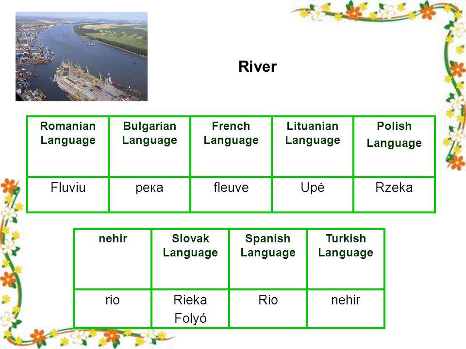 Romanian Language Bulgarian Language French Language Lituanian Language Polish Language FluviuрекаfleuveUpėRzeka nehirSlovak Language Spanish Language Turkish Language rioRieka Folyó Rionehir River
