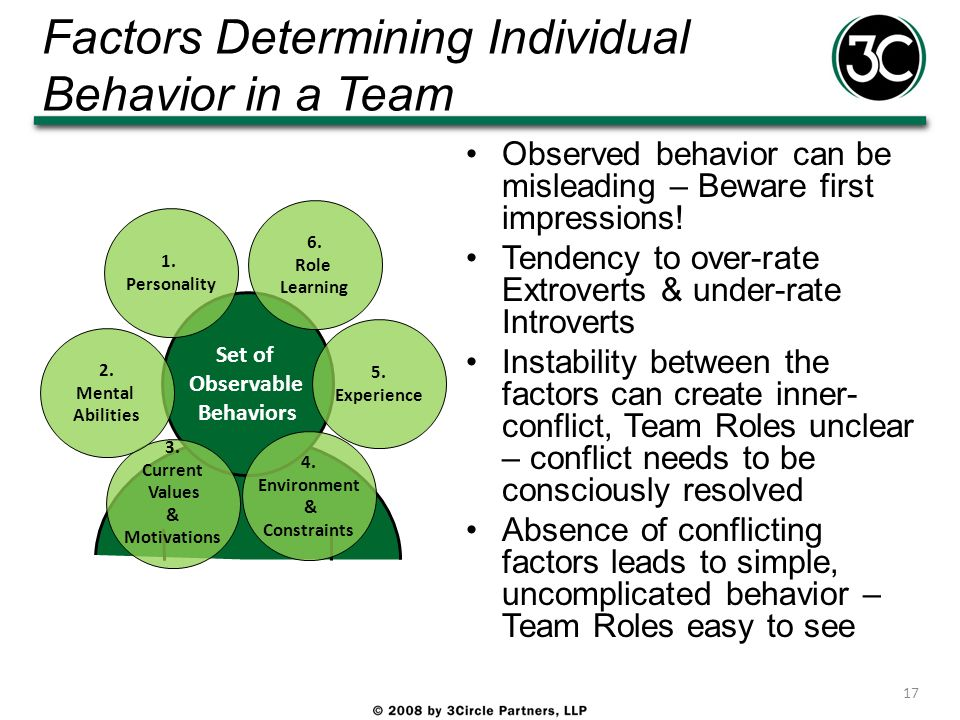 Factors Determining Individual Behavior in a Team Observed behavior can be misleading – Beware first impressions! Tendency to over-rate Extroverts & u