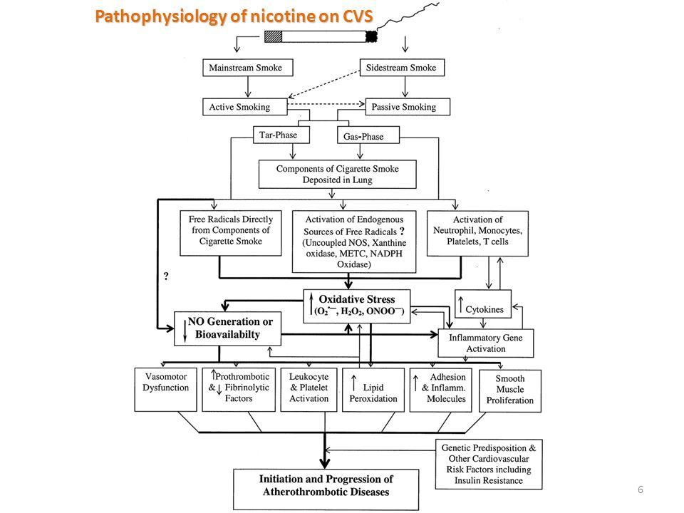 6 Pathophysiology of nicotine on CVS