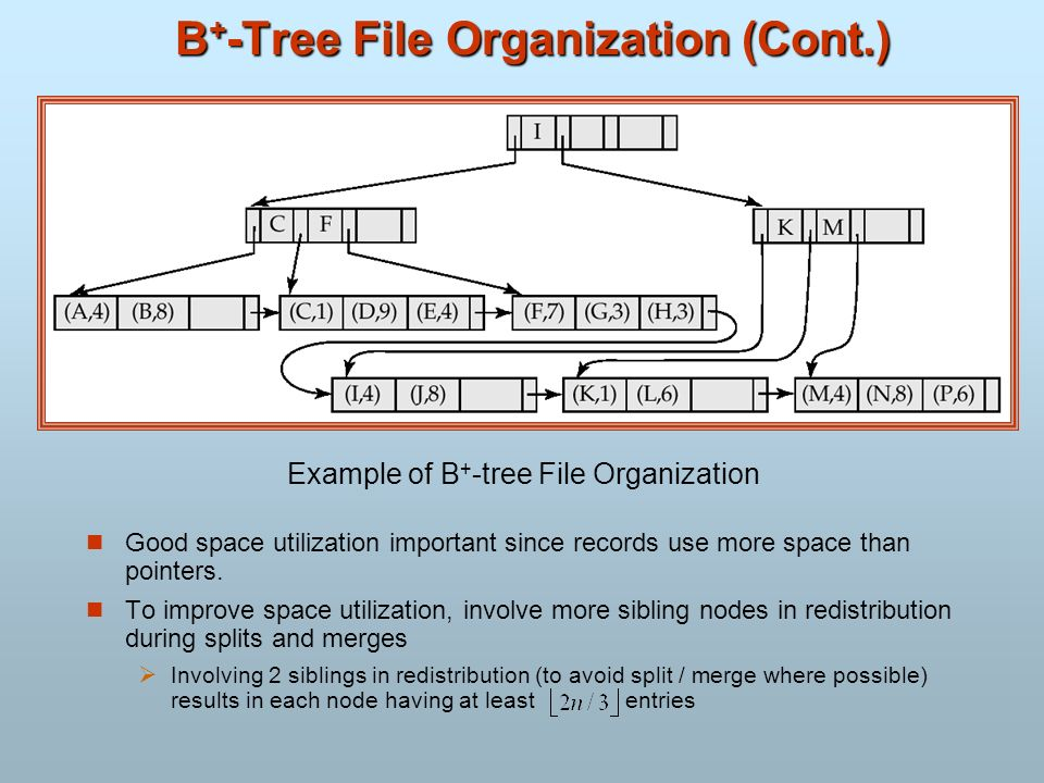 B + -Tree File Organization (Cont.) Good space utilization important since records use more space than pointers. To improve space utilization, involve