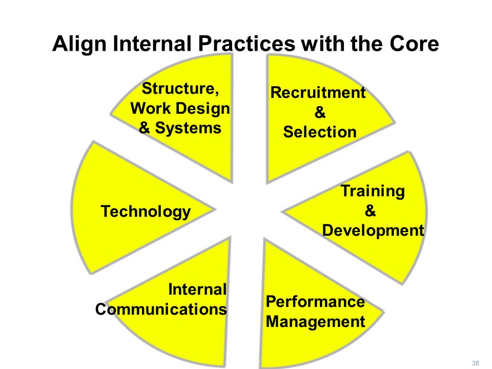 38 Structure, Work Design & Systems Recruitment & Selection Training & Development Performance Management Internal Communications Technology Align Int