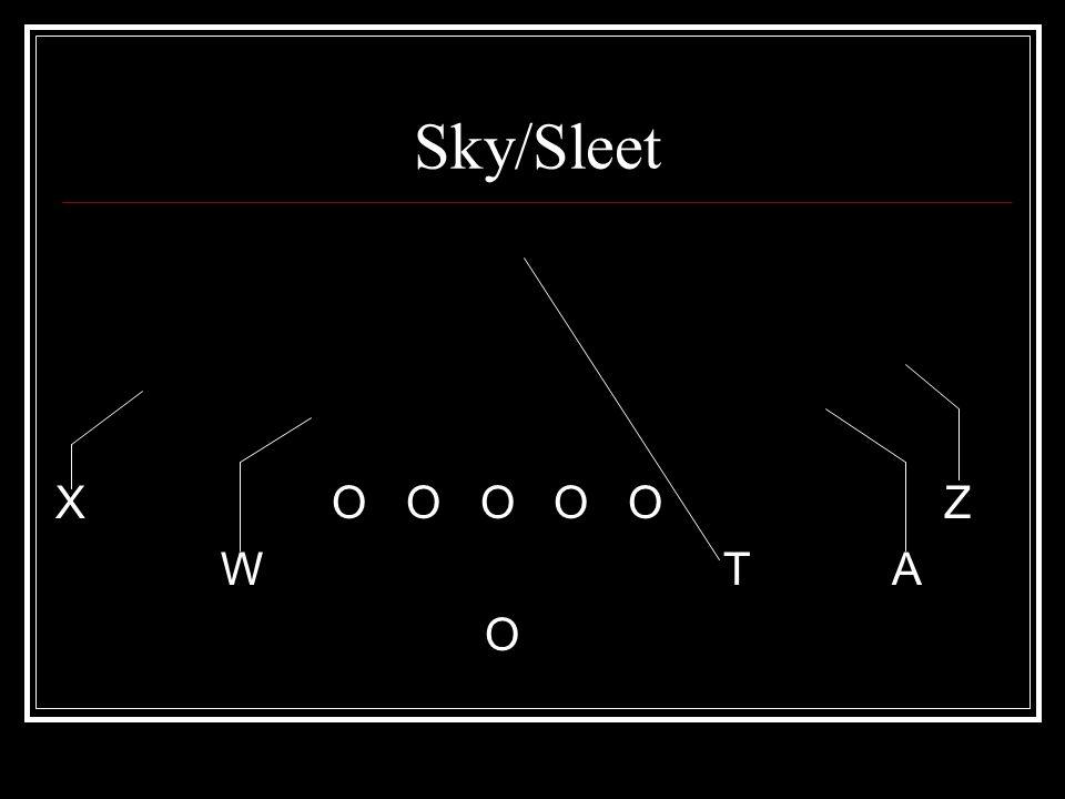Sky/Sleet X O O O O O Z W T A O