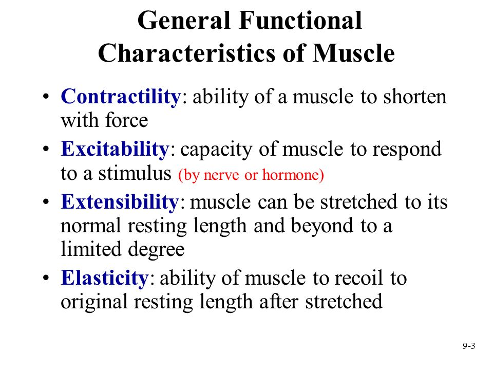 9-3 General Functional Characteristics of Muscle Contractility: ability of a muscle to shorten with force Excitability: capacity of muscle to respond