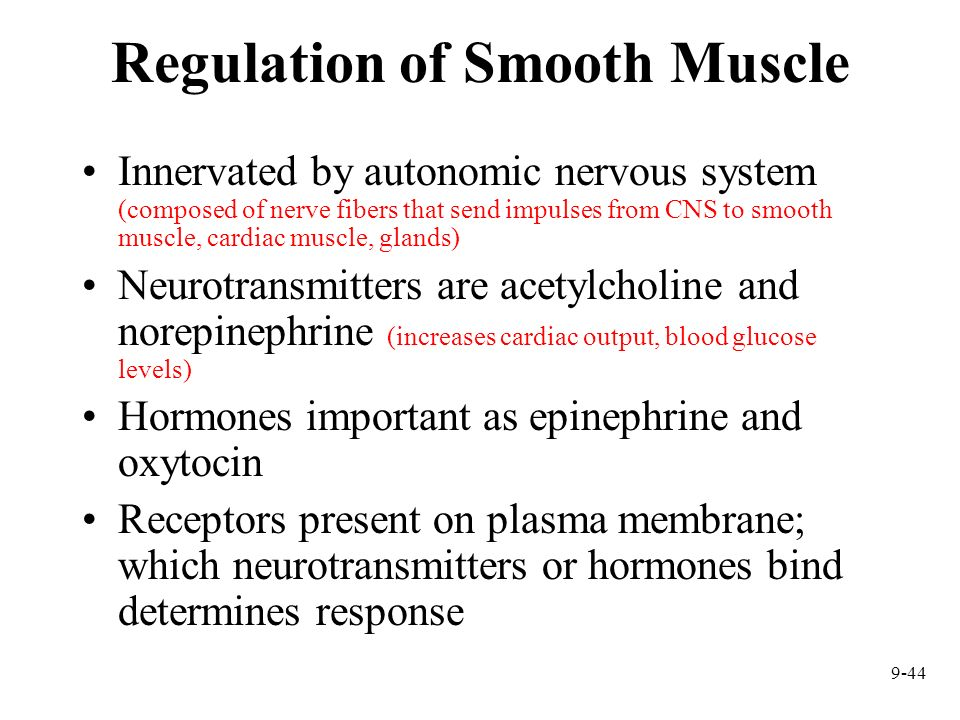 9-44 Regulation of Smooth Muscle Innervated by autonomic nervous system (composed of nerve fibers that send impulses from CNS to smooth muscle, cardia