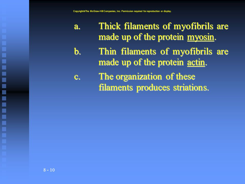 8 - 10 a.Thick filaments of myofibrils are made up of the protein myosin.