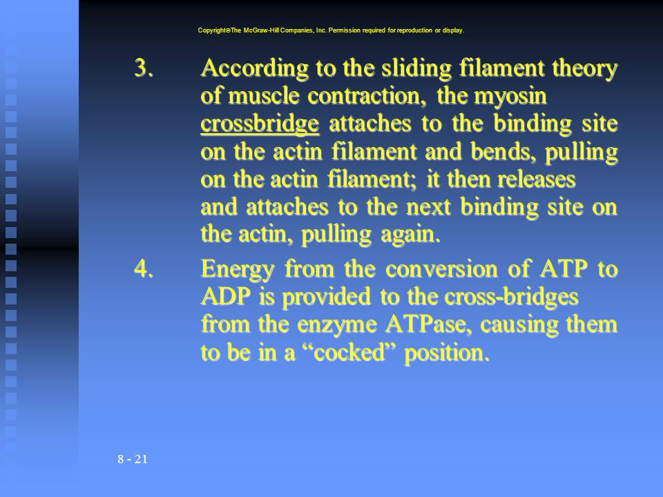 8 - 21 3.According to the sliding filament theory of muscle contraction, the myosin crossbridge attaches to the binding site on the actin filament and bends, pulling on the actin filament; it then releases and attaches to the next binding site on the actin, pulling again.