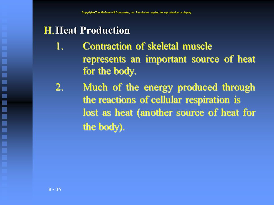 8 - 35 H.Heat Production 1.Contraction of skeletal muscle represents an important source of heat for the body. 2.Much of the energy produced through t