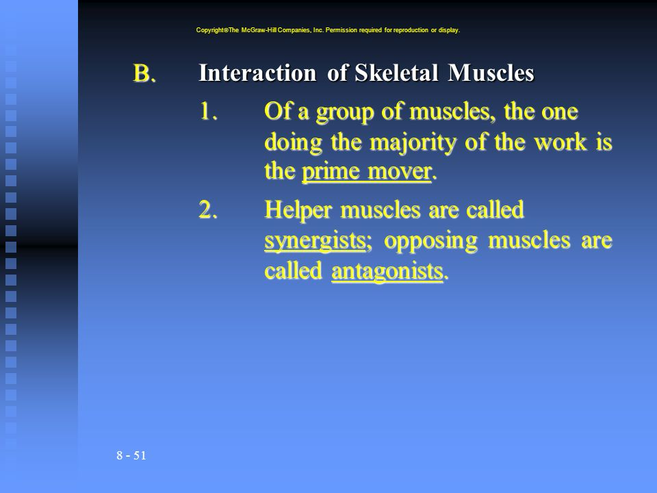 8 - 51 B.Interaction of Skeletal Muscles 1.Of a group of muscles, the one doing the majority of the work is the prime mover.