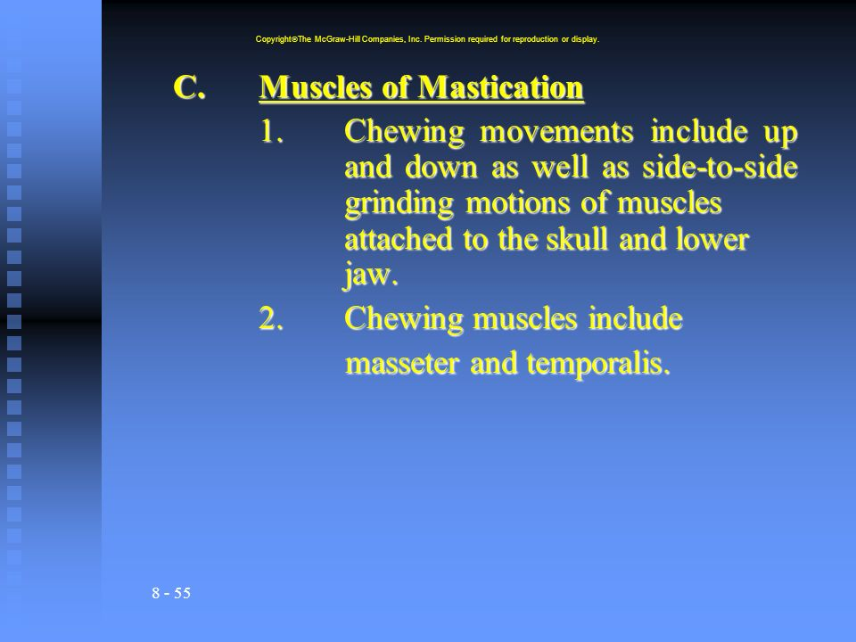 8 - 55 C.Muscles of Mastication 1.Chewing movements include up and down as well as side-to-side grinding motions of muscles attached to the skull and lower jaw.