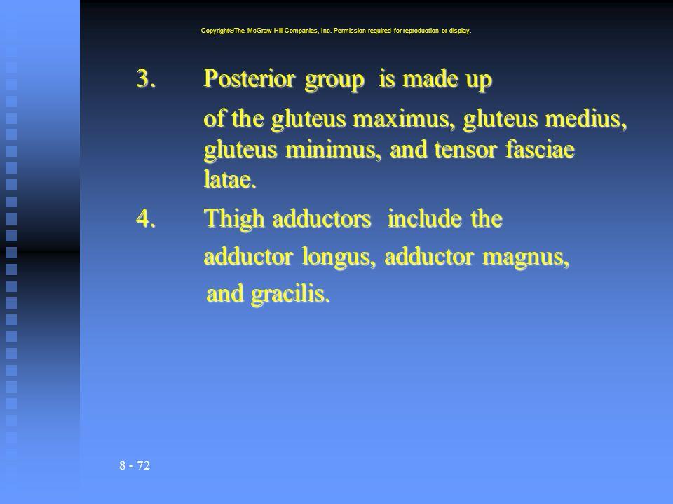 8 - 72 3.Posterior group is made up of the gluteus maximus, gluteus medius, gluteus minimus, and tensor fasciae latae.