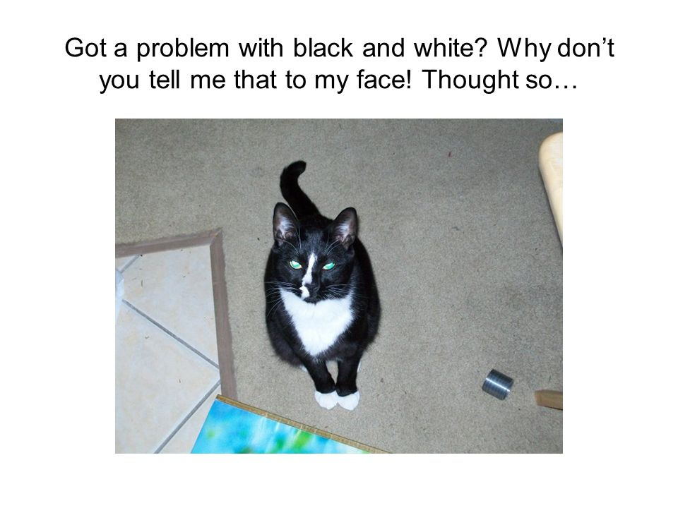 Got a problem with black and white? Why dont you tell me that to my face! Thought so…