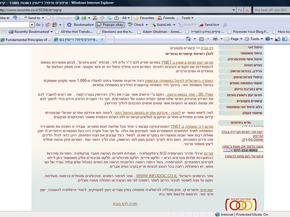 DebiZ Consulting Ltd. 2008 4