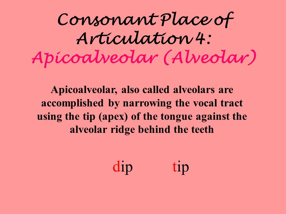 Consonant Place of Articulation 5: Alveolarpalatal Alveolarpalatal are accomplished by narrowing the vocal tract using the tip (apex) of the tongue behind the alveolar ridge at the front edge of the palate shout judge child