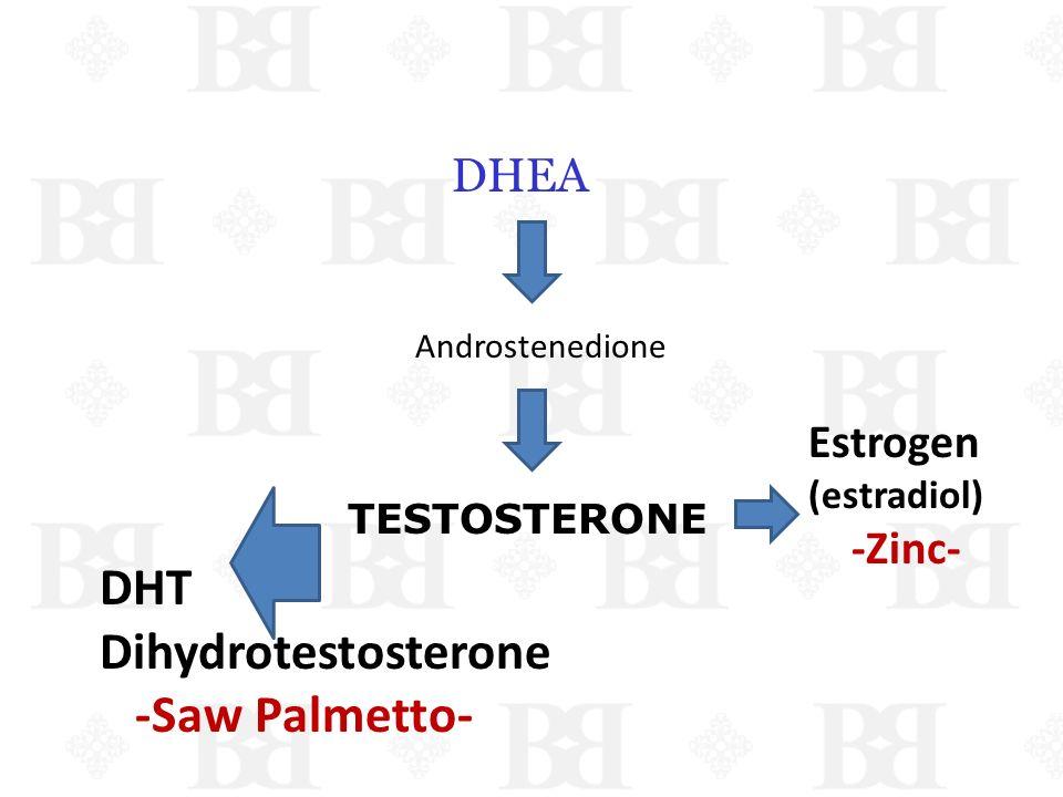 DHEA Androstenedione TESTOSTERONE Estrogen (estradiol) -Zinc- DHT Dihydrotestosterone -Saw Palmetto- ------Z