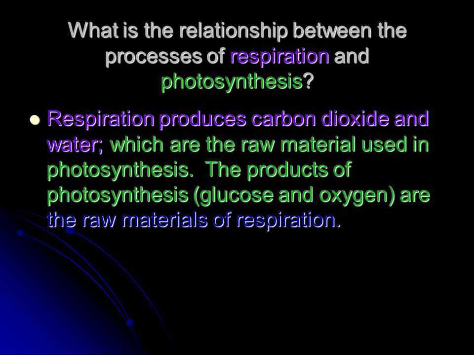 What is the relationship between the processes of respiration and photosynthesis? Respiration produces carbon dioxide and water; which are the raw mat