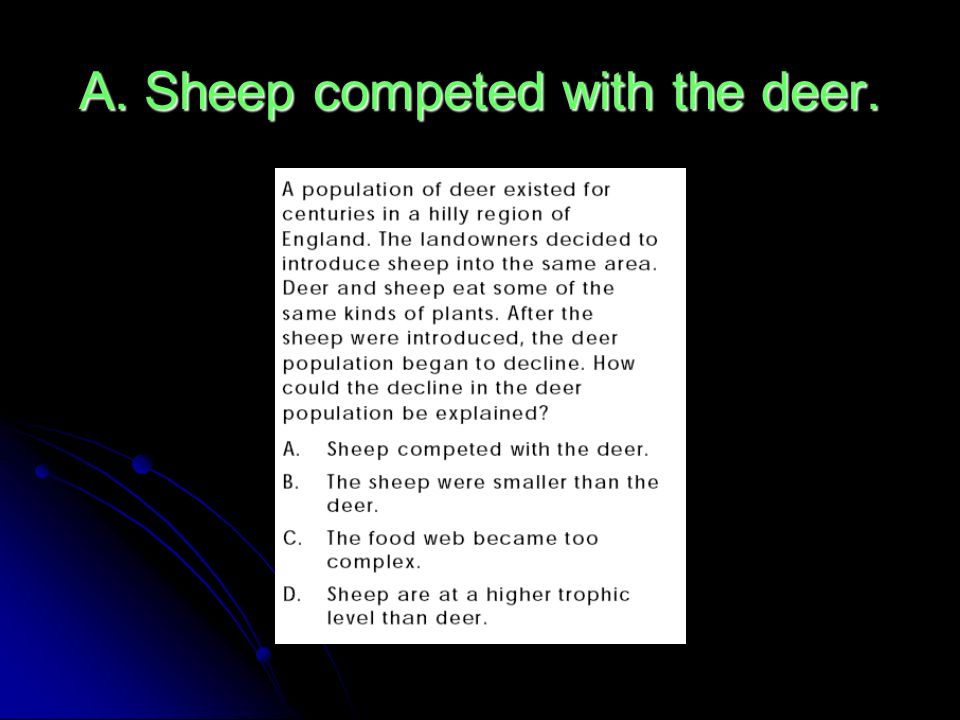 A. Sheep competed with the deer.