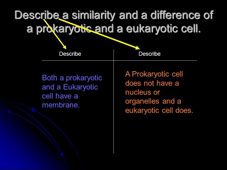 Describe a similarity and a difference of a prokaryotic and a eukaryotic cell. Describe Both a prokaryotic and a Eukaryotic cell have a membrane. A Pr