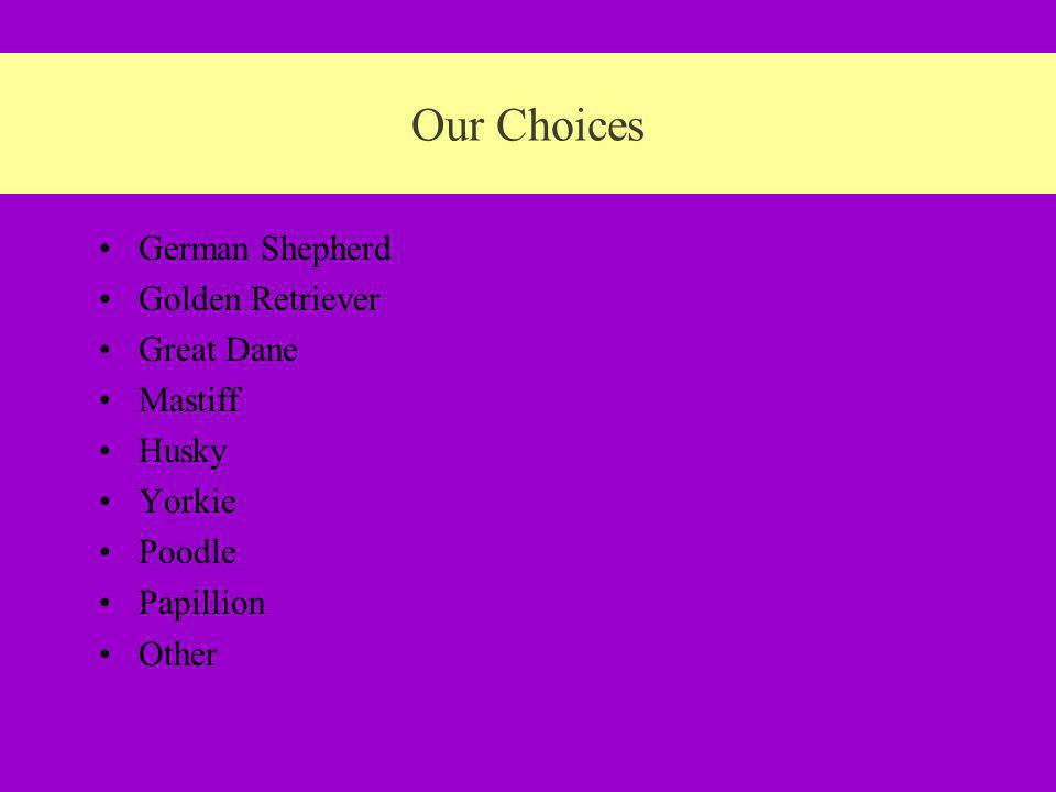 Our Choices German Shepherd Golden Retriever Great Dane Mastiff Husky Yorkie Poodle Papillion Other