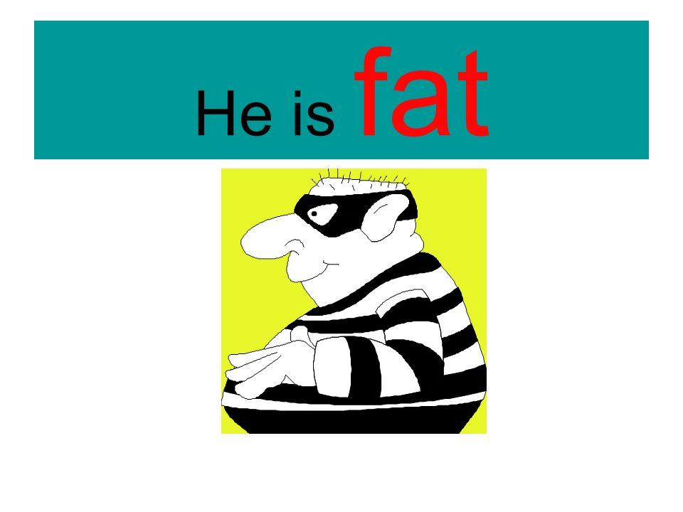 He is……………..