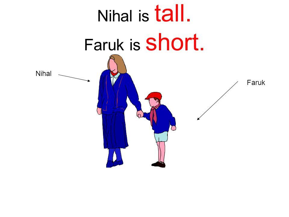 Nihal is tall. Faruk is short. Nihal Faruk