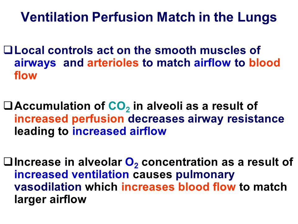 Ventilation Perfusion Match in the Lungs Local controls act on the smooth muscles of airways and arterioles to match airflow to blood flow Accumulatio