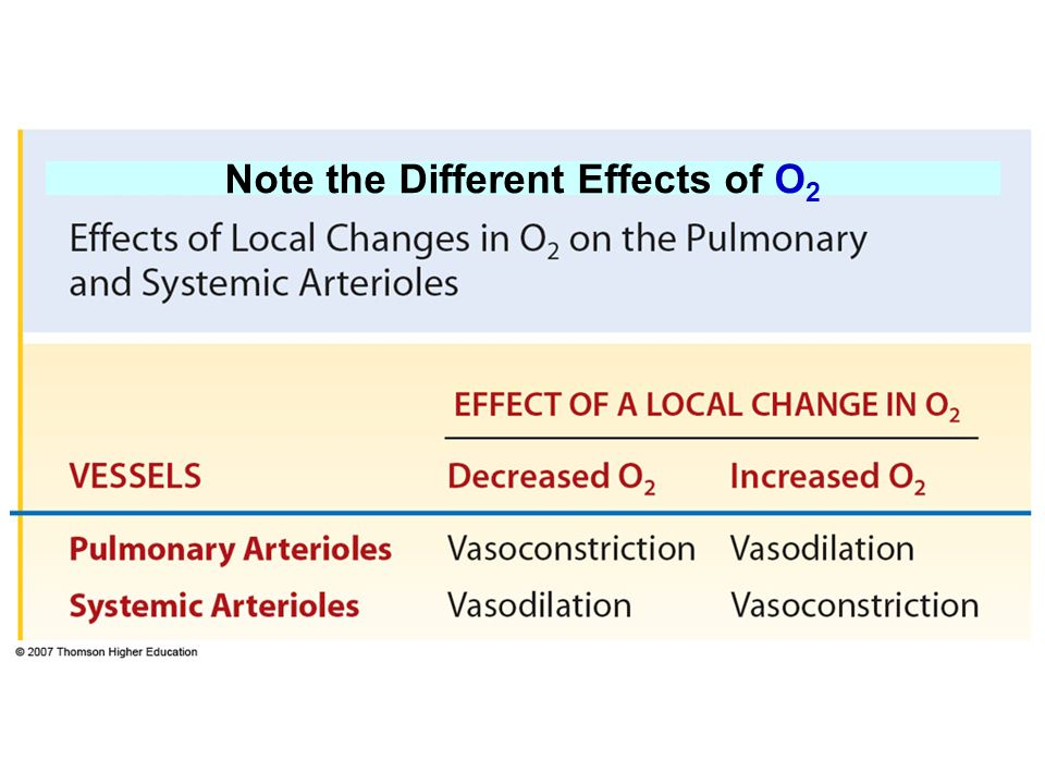 Note the Different Effects of O 2