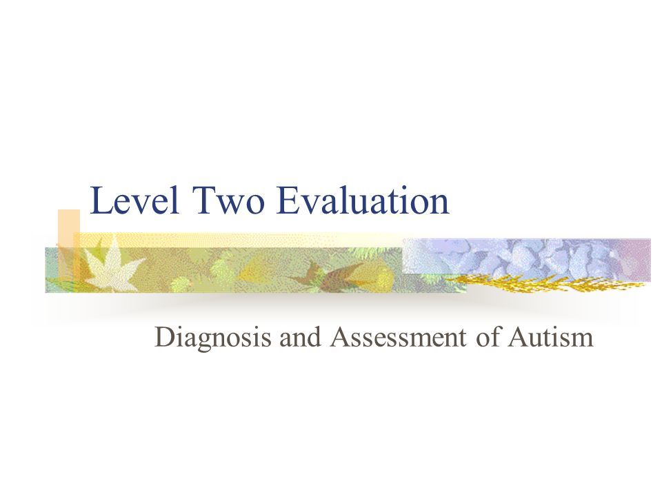 Level Two Evaluation Diagnosis and Assessment of Autism