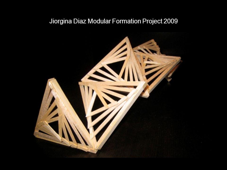 Jiorgina Diaz Modular Formation Project 2009