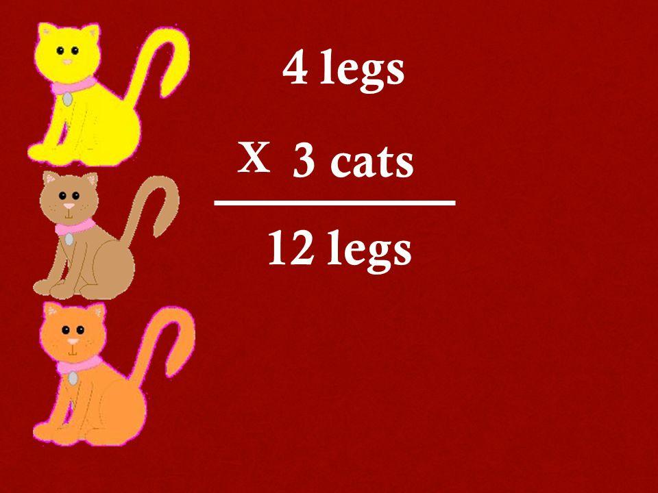 4 legs 3 cats 12 legs X