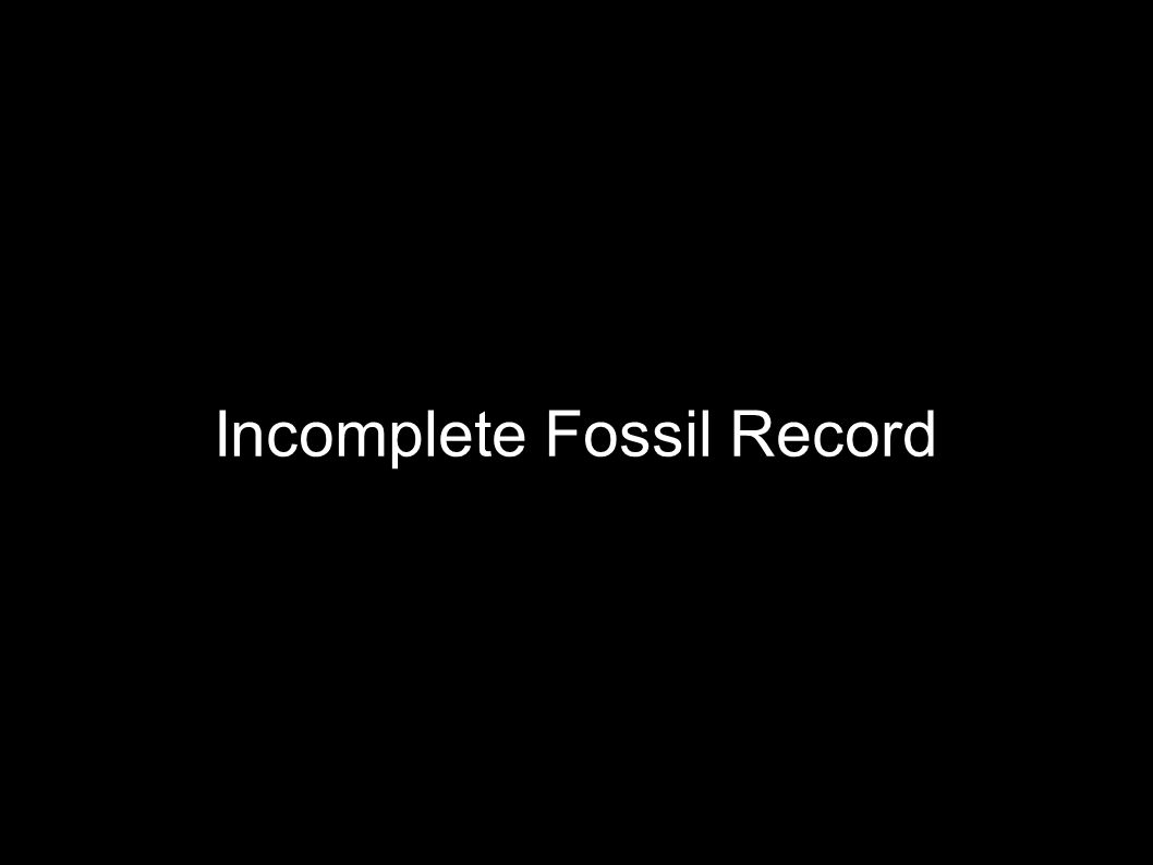 Incomplete Fossil Record