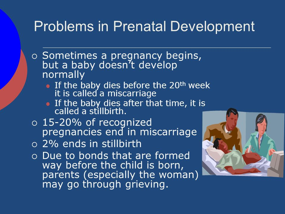 Birth Defects Some babies survive the pregnancy but are born with serious problems called birth defects.