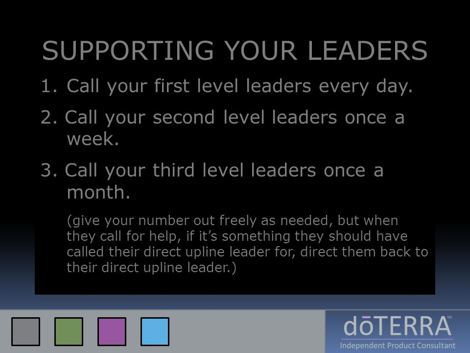 SUPPORTING YOUR LEADERS 1.Call your first level leaders every day. 2. Call your second level leaders once a week. 3. Call your third level leaders onc