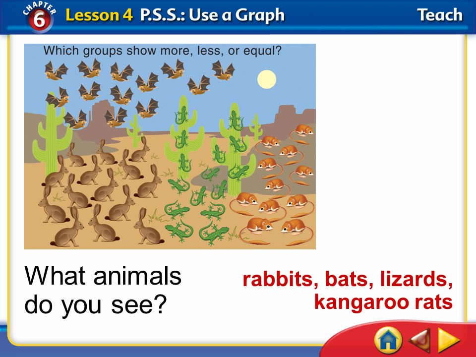 Lesson 4Teach What animals do you see? rabbits, bats, lizards, kangaroo rats