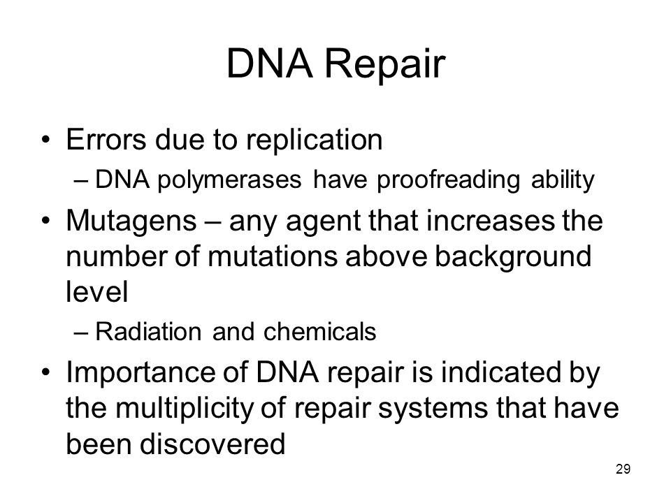 29 DNA Repair Errors due to replication –DNA polymerases have proofreading ability Mutagens – any agent that increases the number of mutations above b