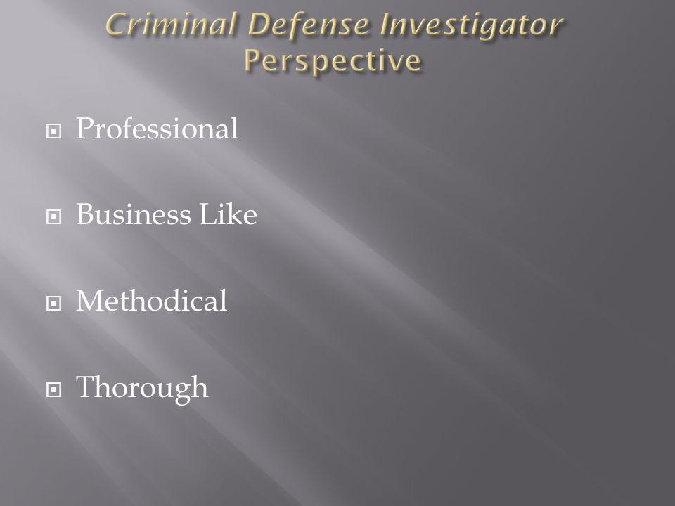 Professional Business Like Methodical Thorough
