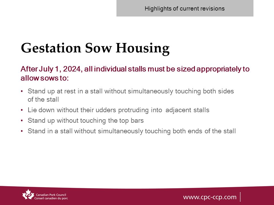 Gestation Sow Housing After July 1, 2024, all individual stalls must be sized appropriately to allow sows to: Stand up at rest in a stall without simultaneously touching both sides of the stall Lie down without their udders protruding into adjacent stalls Stand up without touching the top bars Stand in a stall without simultaneously touching both ends of the stall Highlights of current revisions