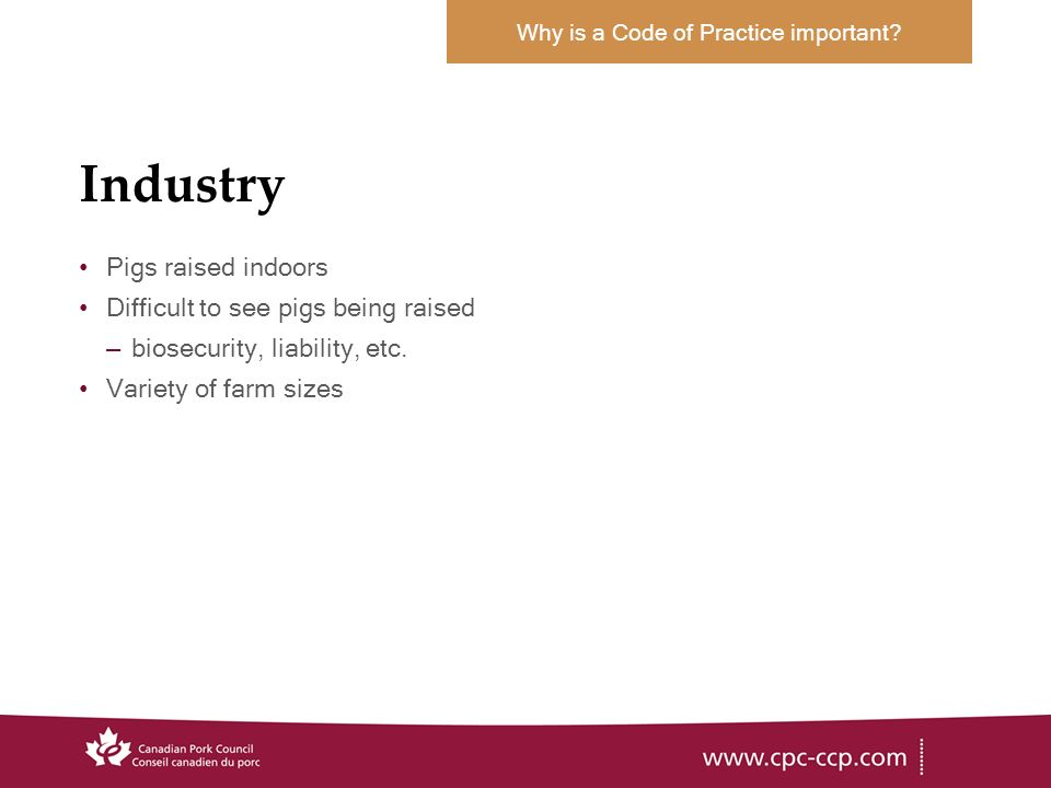 Industry Pigs raised indoors Difficult to see pigs being raised –biosecurity, liability, etc.