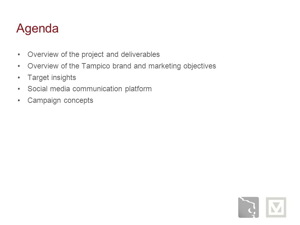Agenda Overview of the project and deliverables Overview of the Tampico brand and marketing objectives Target insights Social media communication plat
