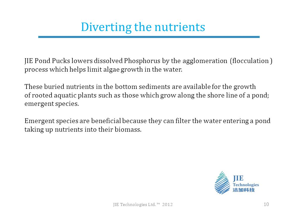Diverting the nutrients JIE Technologies Ltd. 2012 10 JIE Pond Pucks lowers dissolved Phosphorus by the agglomeration (flocculation ) process which he