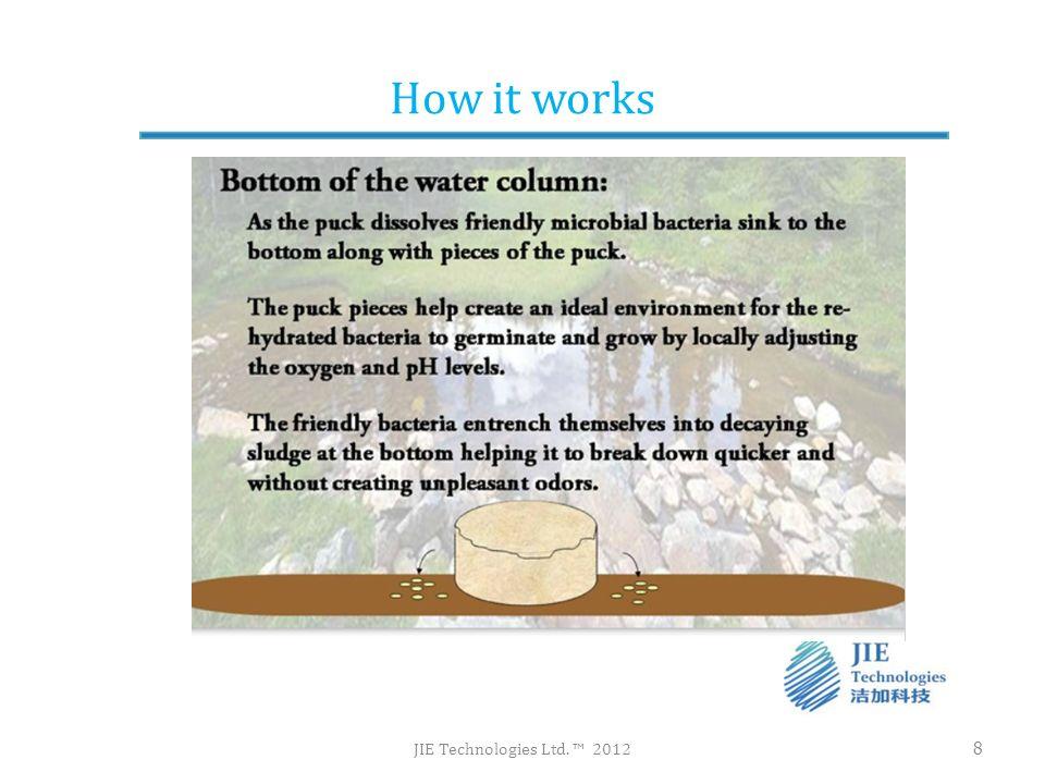 Efficient use of Bacteria JIE Technologies Ltd.