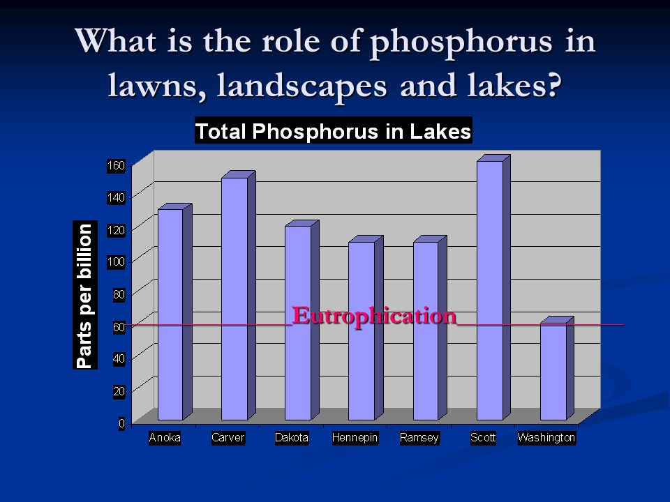 What is the role of phosphorus in lawns, landscapes and lakes? ____________________ Eutrophication ____________________