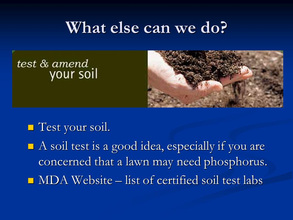 What else can we do? Test your soil. A soil test is a good idea, especially if you are concerned that a lawn may need phosphorus. MDA Website – list o