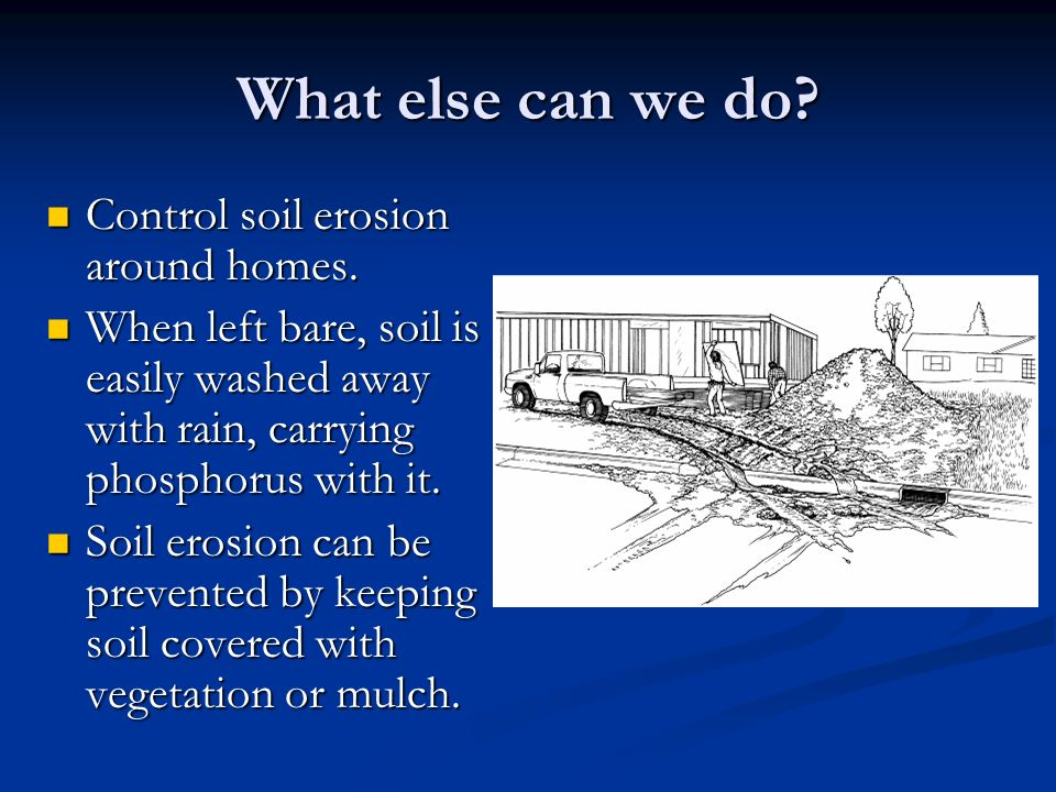 What else can we do. Control soil erosion around homes.