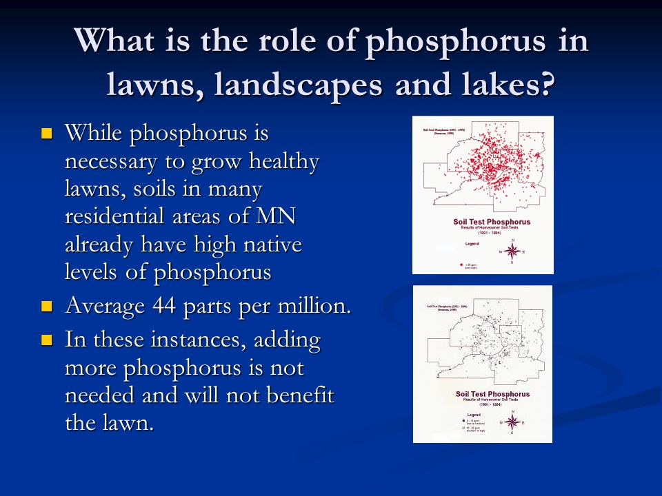 What is the role of phosphorus in lawns, landscapes and lakes? While phosphorus is necessary to grow healthy lawns, soils in many residential areas of