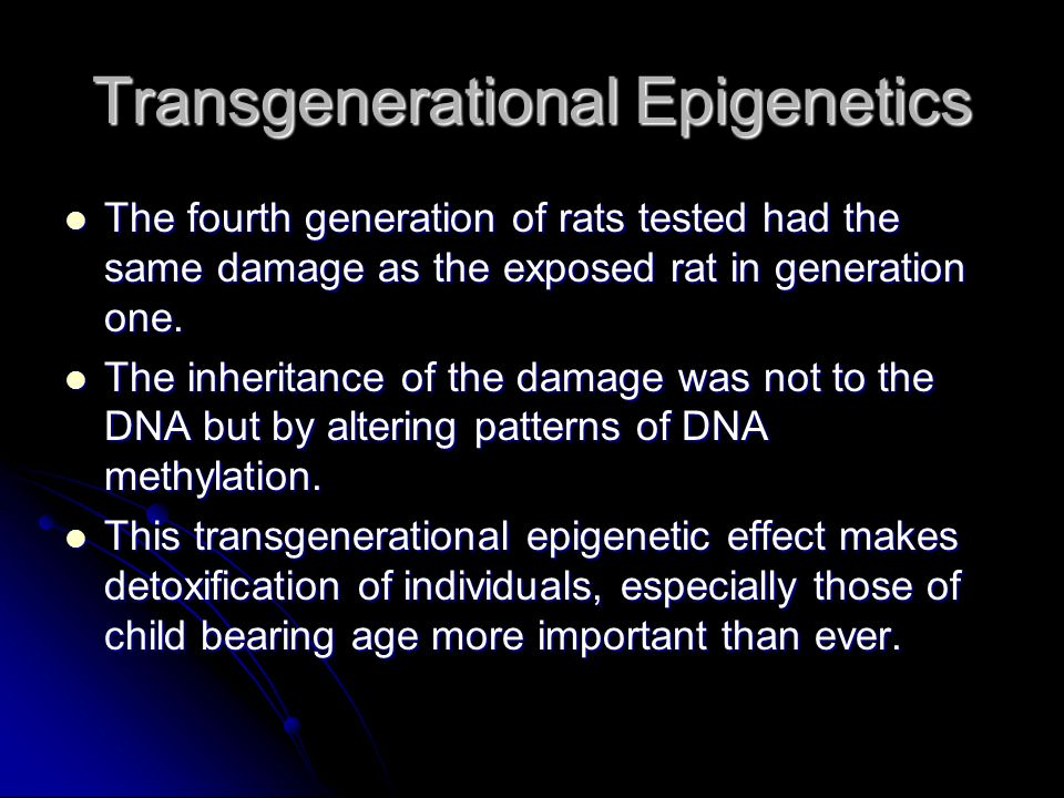 Transgenerational Epigenetics The fourth generation of rats tested had the same damage as the exposed rat in generation one. The fourth generation of