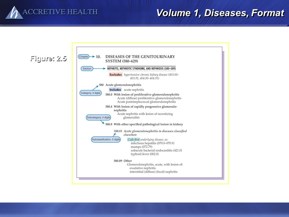Volume 1, Diseases, Format Figure: 2.5 Modified from Buck CJ: 2011 ICD-9-CM for Hospitals, Volumes 1, 2, & 3, Professional Edition, St. Louis, 2011, S