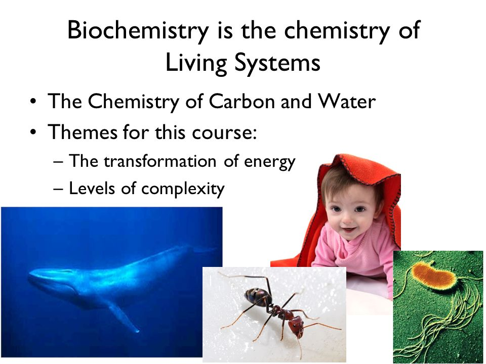 Biochemistry is the chemistry of Living Systems The Chemistry of Carbon and Water Themes for this course: –The transformation of energy –Levels of com