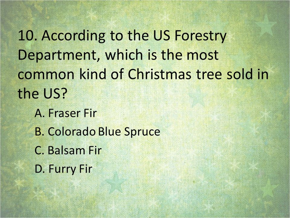 10. According to the US Forestry Department, which is the most common kind of Christmas tree sold in the US? A. Fraser Fir B. Colorado Blue Spruce C.
