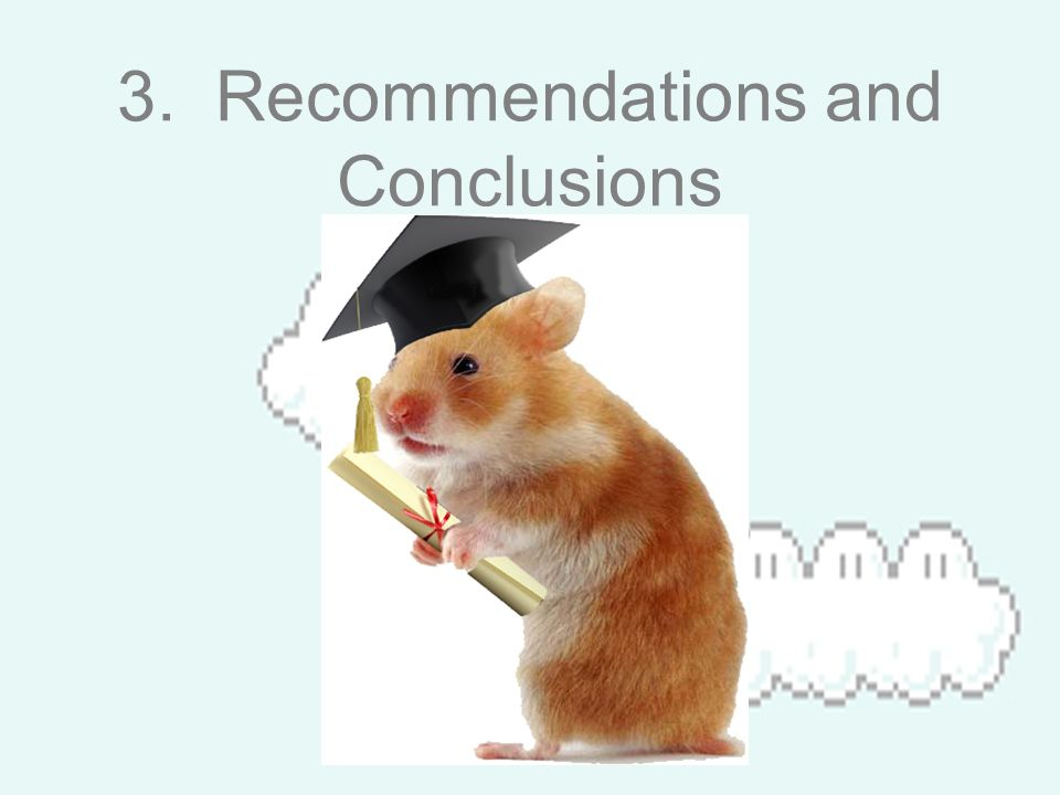 3. Recommendations and Conclusions
