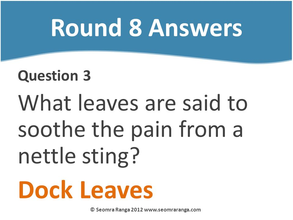 Round 8 Answers Question 3 What leaves are said to soothe the pain from a nettle sting? Dock Leaves © Seomra Ranga 2012 www.seomraranga.com